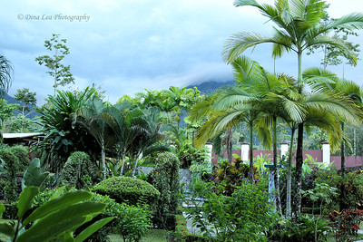 Magic Mountain Hotel - Room View of Arenal Volcano