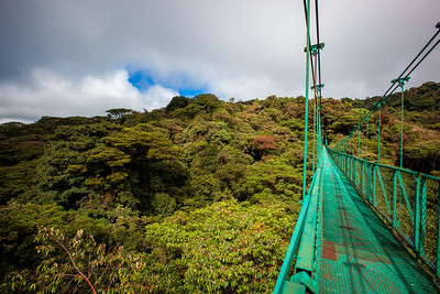 Canopy Bridge- Monteverde