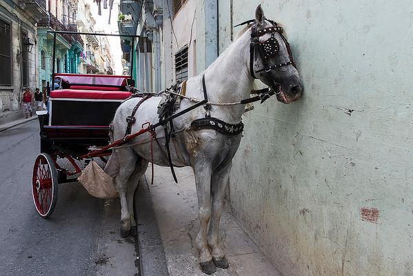 Take Five:) - Havana, Cuba