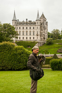 The Falconer at Dunrobin Castle