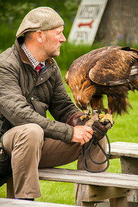 Falconer and Golden Eagle