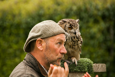 Falconer and Owl