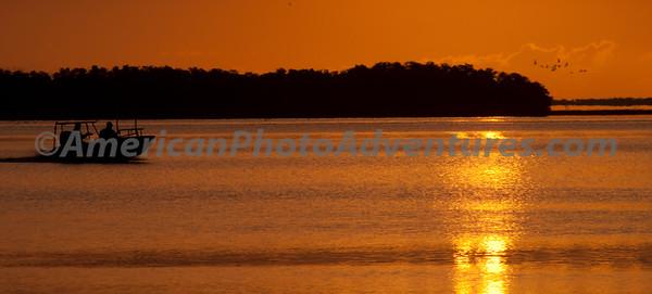 Everglades2011_0156
