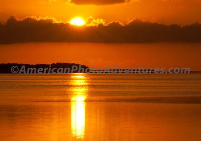 Everglades2011_0161