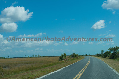 Everglades NP.  Living in a hilly area, the flatness of the Everglades amazes me.