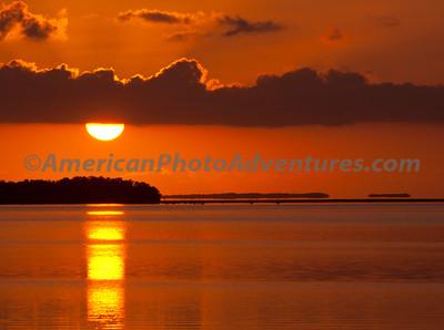 Everglades2011_0138