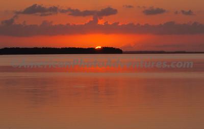 Everglades2011_0102