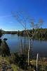 Saranac Lake #3