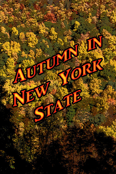 Autumn in New York State