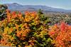 Olana - Catskills View with Trees