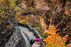 Letchworth State Park - Path to the Bridge