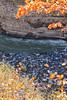 Letchworth State Park - River Rocks