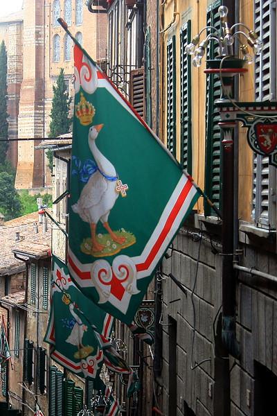 Siena - Contrada of the Goose