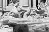 Trevi Fountain 9