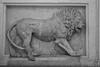 Palazzo Barberini - Lion Frieze