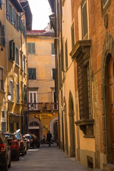 Pisa Scenery 4