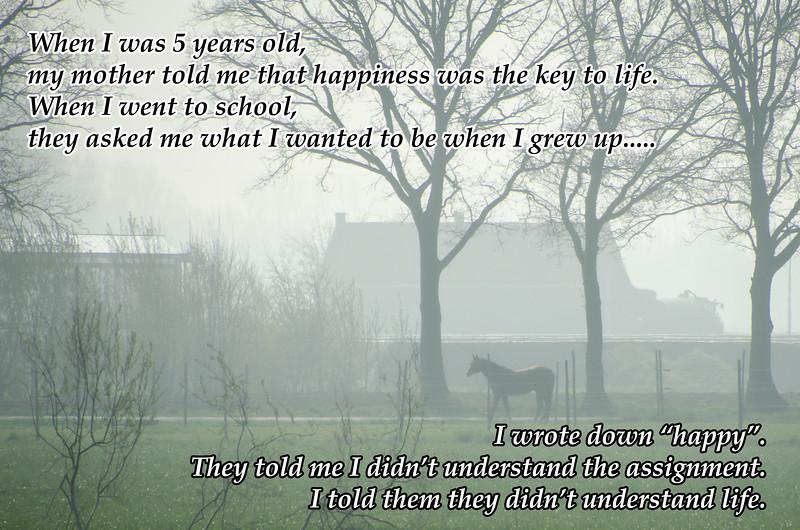 Misty Belgian Morning