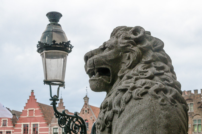 Brugges Likes Their Lions