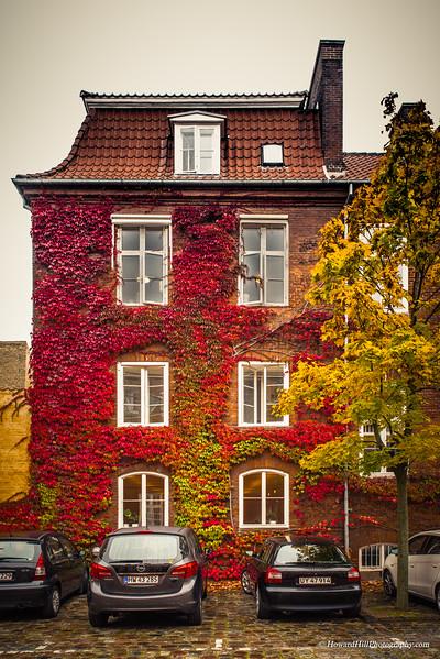 Details - Copenhagen