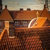 Danish Roof LInes