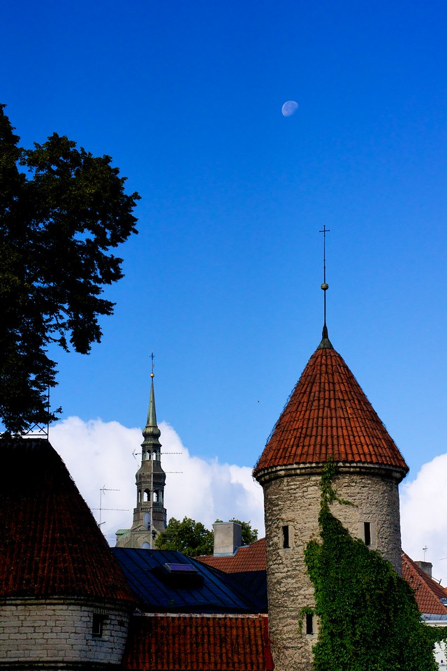 Moon over tower Tallinn.