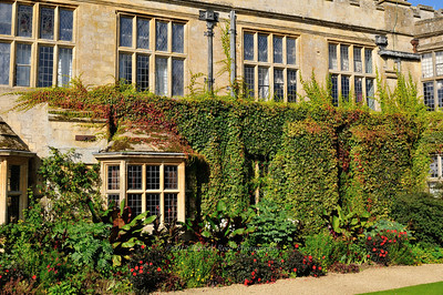 Flowers and vines growing on Sudeley Castle
