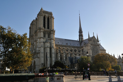 Notre Dame in the morning