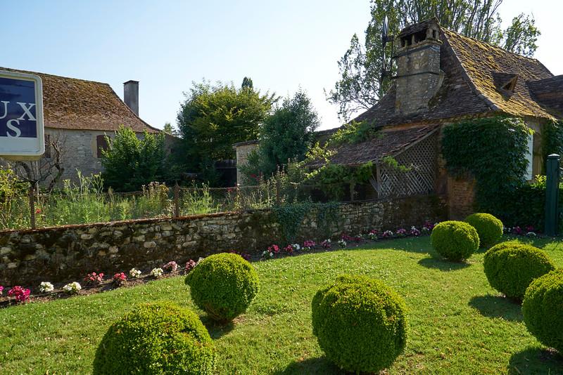 an arrangement of shrubs