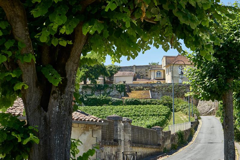 Street view St Emilion