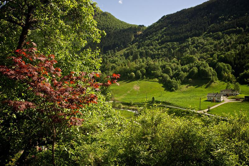 Verdant Valley near Geiranger