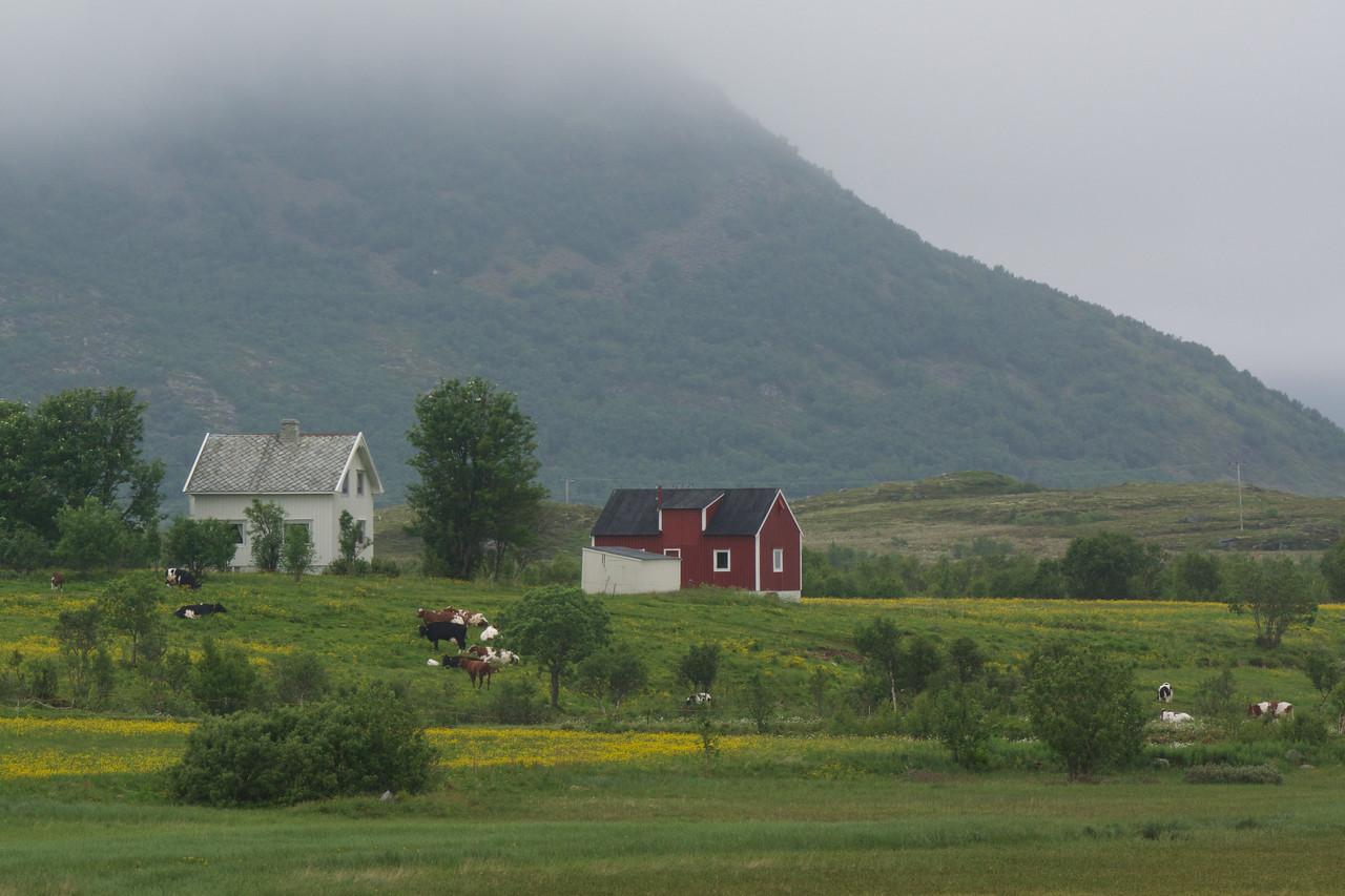 Farm Leknes