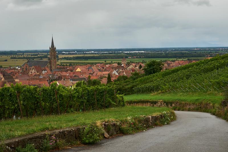 Vineyards and Steeple