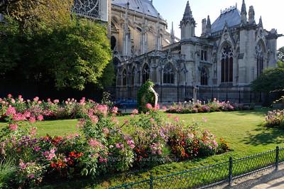 Gardens around Notre Dame