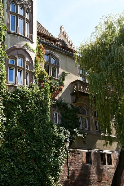 Home Strasbourg