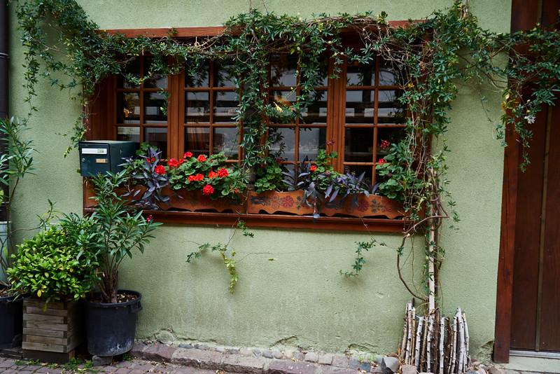 Colorful window Kaysersberg