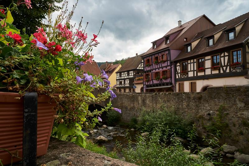 Flowers and homes Kaysersberg