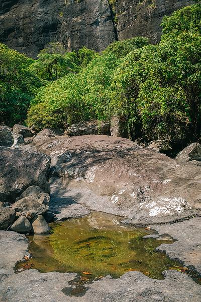 Fiji 2019 Mt Batilamu Hike_03