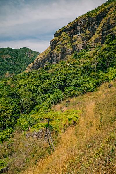 Fiji 2019 Mt Batilamu Hike_23