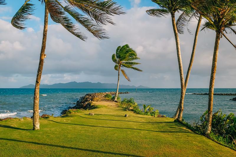 Fiji 2019 - Pacific Harbour_22