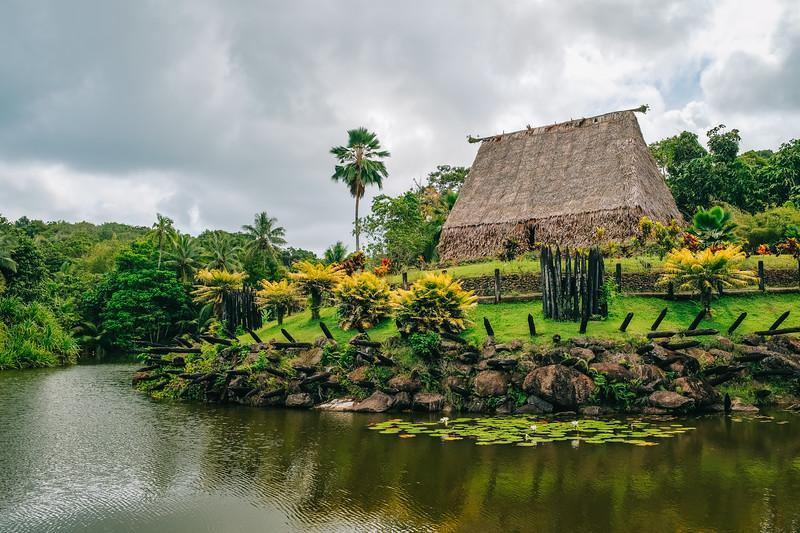 Fiji 2019 - Pacific Harbour_14