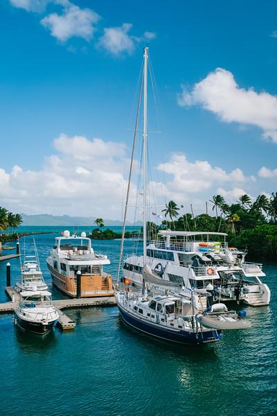 Fiji 2019 - Pacific Harbour_19