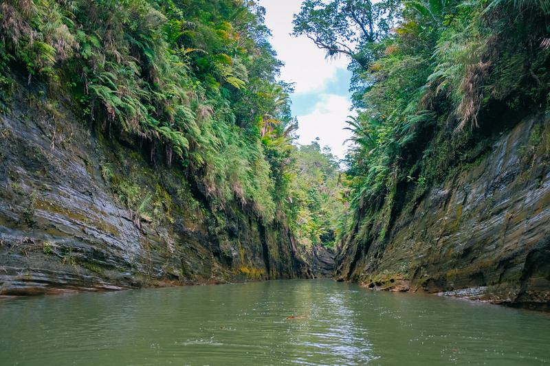 Upper Navua River Gorge Rafting Trip_22