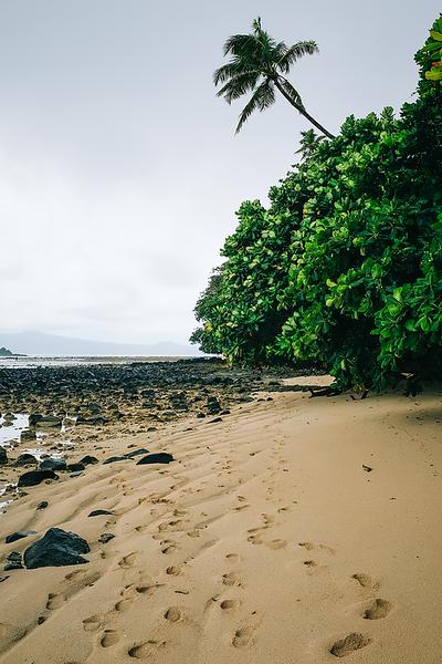 Fiji 2019 Waruka Bay Resort_07