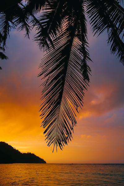 Fiji 2019 Waruka Bay Resort_17