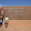 petrified forest, NP