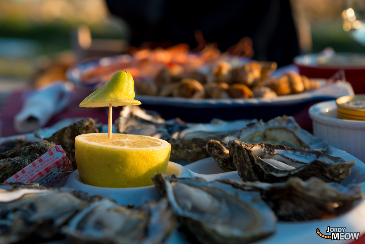 Oysters at Larros