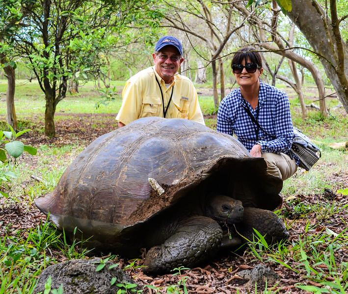 Steve and Debbie Ollard