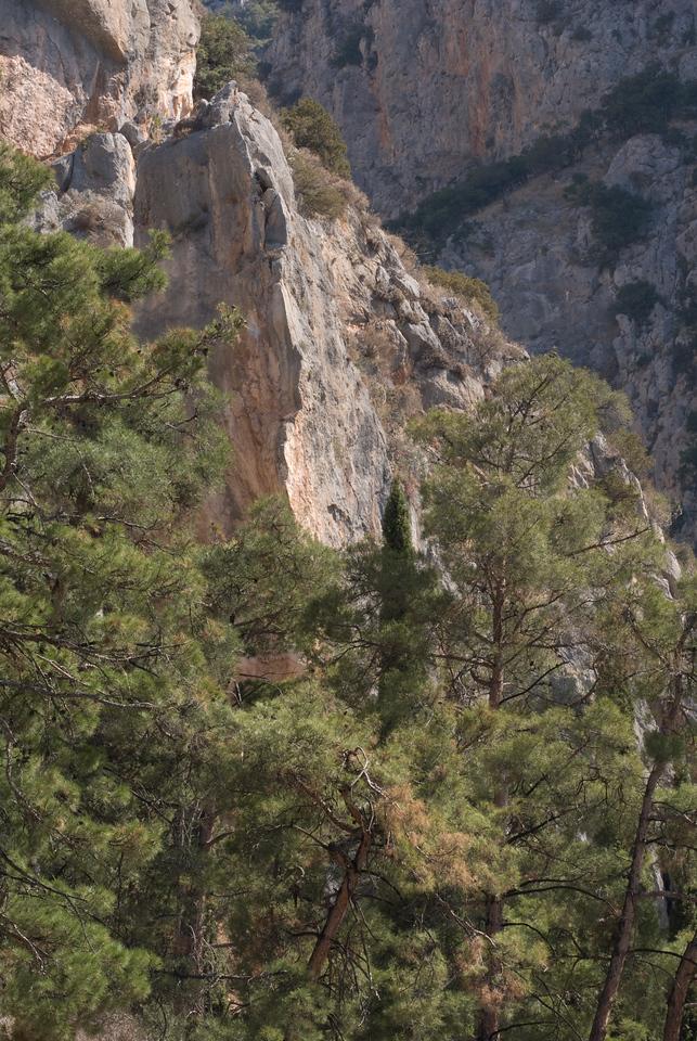 Greece Turkey 2007<br /> Delphi - one of brilliant rocks
