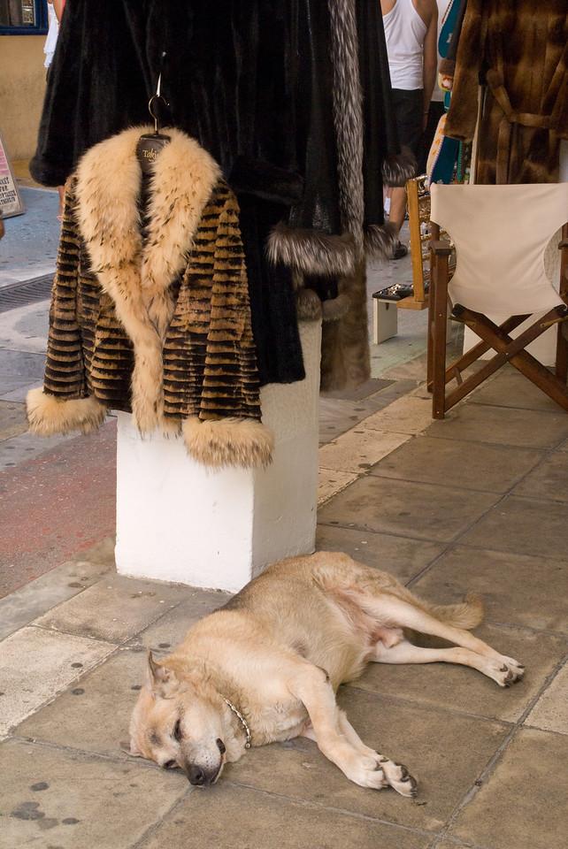 Athens<br /> fur