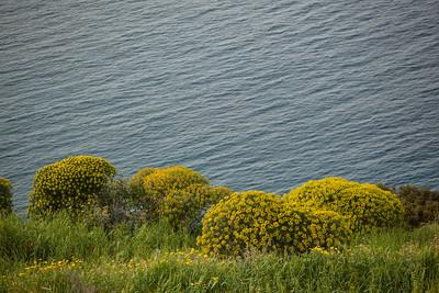 Hydra Coastline